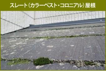 苔の生えたスレート(カラーベスト・コロニアル)屋根
