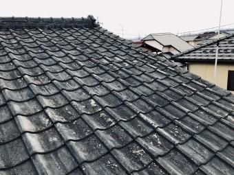 大屋根のセメント瓦